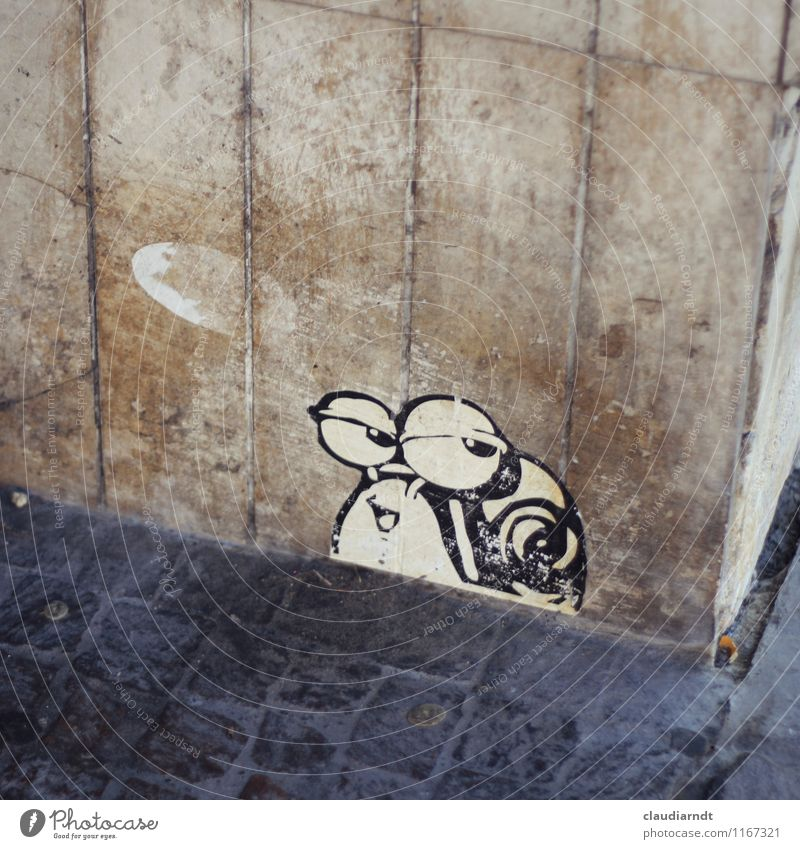 Schneck-Eck Kunst Kunstwerk Subkultur Straßenkunst Etikett Haus Bauwerk Gebäude Mauer Wand Fassade Ecke Schnecke 1 Tier lustig blau braun genervt Pflastersteine