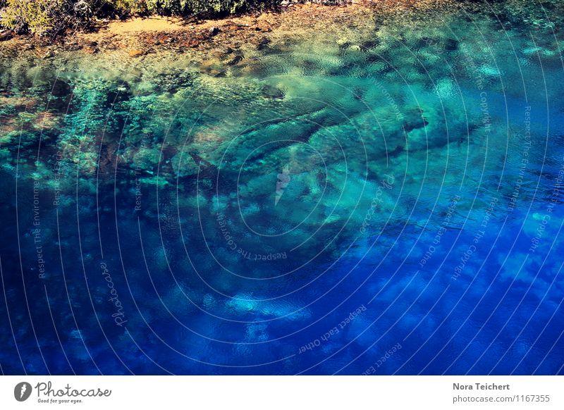 Sehnsucht. Natur Ferien & Urlaub & Reisen blau Sommer Wasser Sonne Erholung Meer Landschaft ruhig Strand Umwelt Reisefotografie Küste Schwimmen & Baden