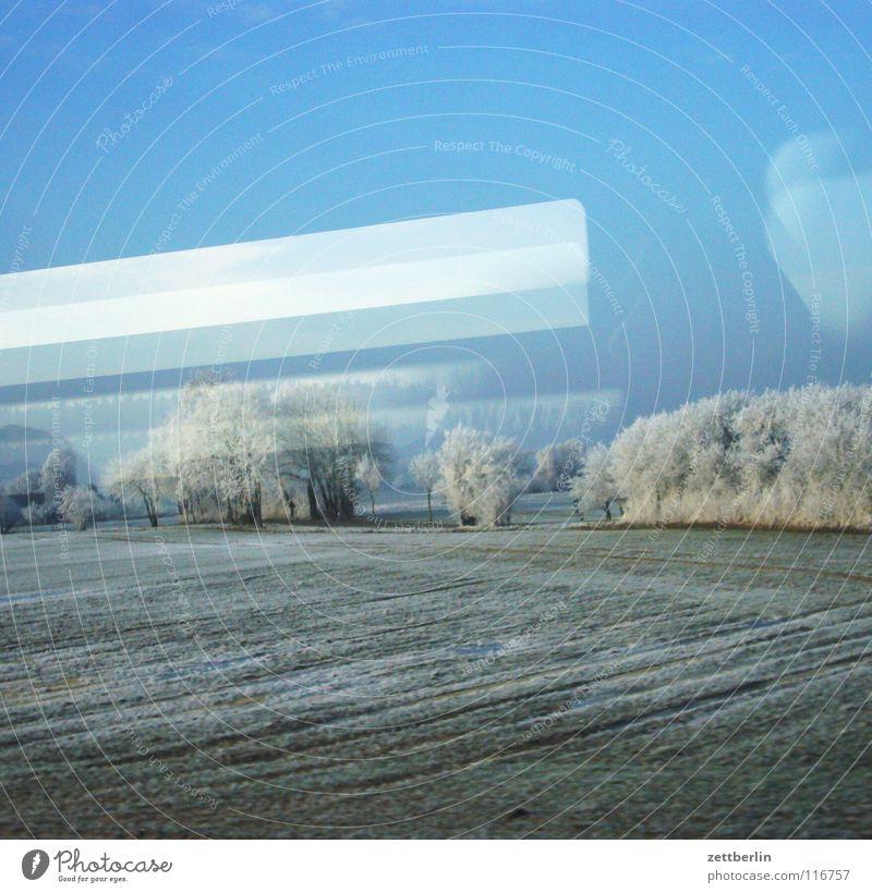 Bahnfahrt nach Norden 7 Baum Sträucher Winter Raureif unreif Eisenbahn Abteilfenster Oberleitung Licht Lampe Reflexion & Spiegelung fahren Durchgang Feld