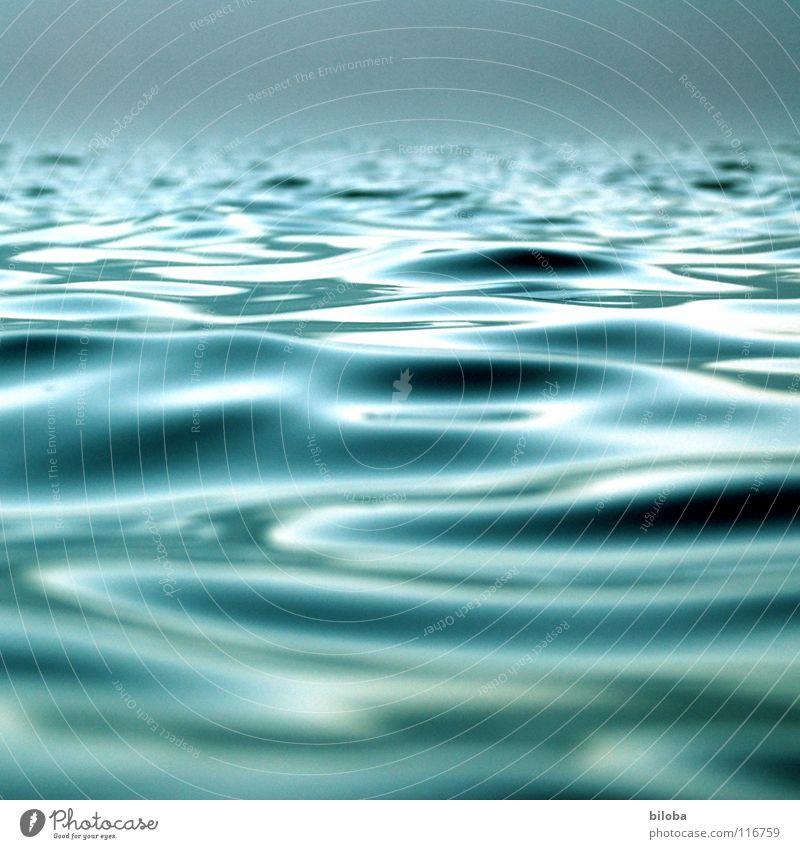 Wellen auf dem See im sanften Gegenlicht. Wasser Wasseroberfläche Erholung ruhig Himmel Nebel bedrohlich Flüssigkeit Unendlichkeit kalt weich grau grün