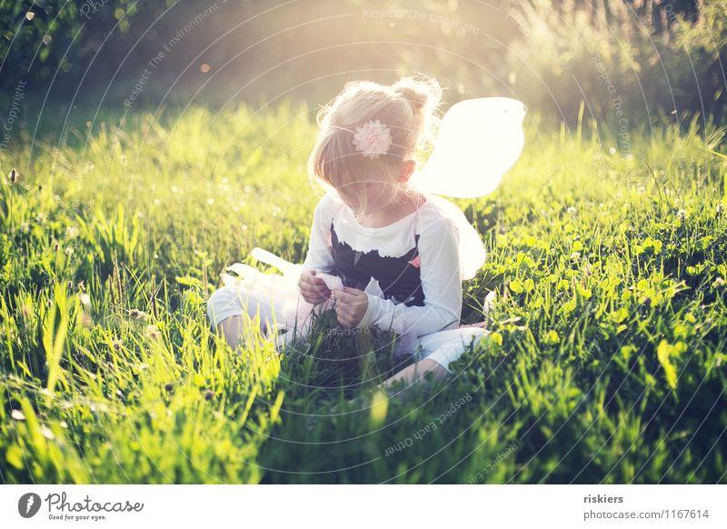 feensommer Mensch feminin Kind Mädchen Kindheit 1 3-8 Jahre Umwelt Natur Pflanze Sommer Schönes Wetter Wiese Feld Denken entdecken Erholung leuchten sitzen