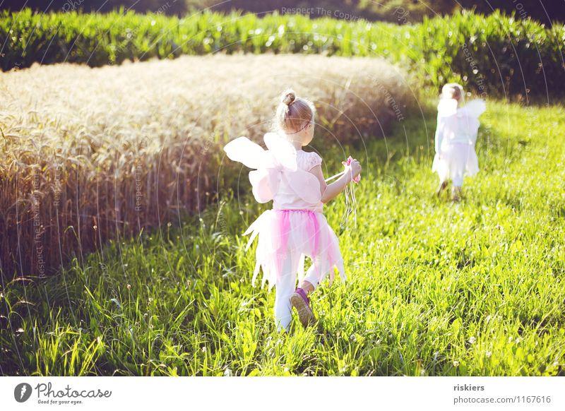feensommer ii Mensch feminin Kind Mädchen Geschwister Schwester Kindheit 2 3-8 Jahre Umwelt Natur Landschaft Sonnenlicht Sommer Schönes Wetter Wiese Feld