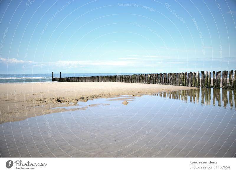 Buhnen Himmel blau Sommer Wasser Sonne Erholung Meer ruhig Freude Strand Küste Holz Schwimmen & Baden hell Sand Wellen