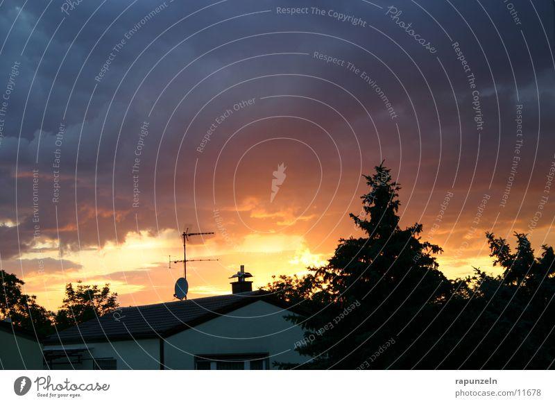 Farbenspiel Baum Sonne Haus Dach Verlauf dramatisch