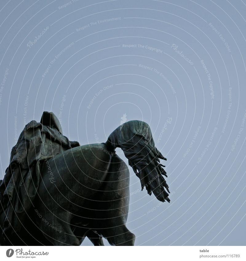 Quadratarsch Berlin Kunst Rücken Vergangenheit Pferd Wahrzeichen Denkmal Sehenswürdigkeit Hinterteil Quadrat Langeweile Sightseeing Tourist Kartoffeln Kunsthandwerk Potsdam