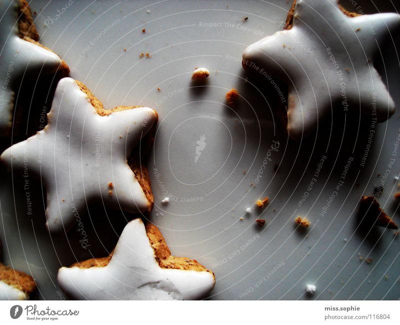 zimtsterne Weihnachten & Advent weiß Ernährung süß Stern (Symbol) Warmherzigkeit lecker entdecken Süßwaren Vorfreude Teller Backwaren Zucker Teigwaren
