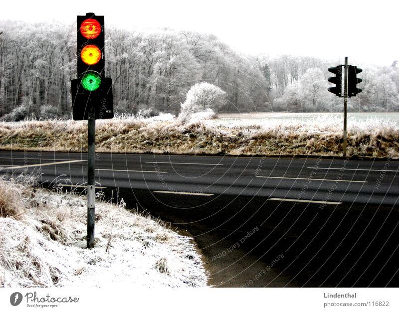 AMPEL grün rot Winter gelb Straße Wald Schnee Landschaft orange lustig Verkehr verrückt Ampel Raureif