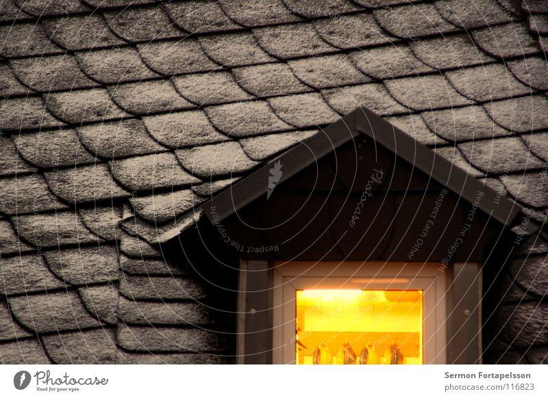 das dach gegenüber Dach Haus Fenster Dachgaube Licht Dachziegel Deckung Winter kalt Raureif Tasse Küche Gebäude Wohnung Dachgeschoss Abend gründerzeit