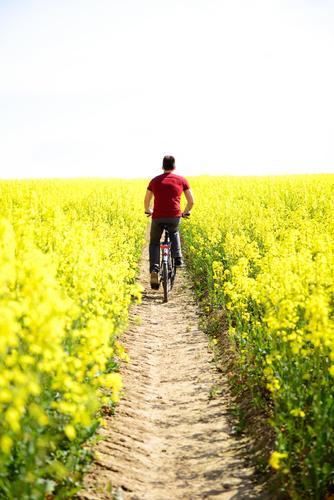 Der Weg in Paradies Mensch Natur Ferien & Urlaub & Reisen Jugendliche Mann schön Sommer Blume Landschaft Junger Mann Erwachsene Umwelt gelb Leben Wege & Pfade