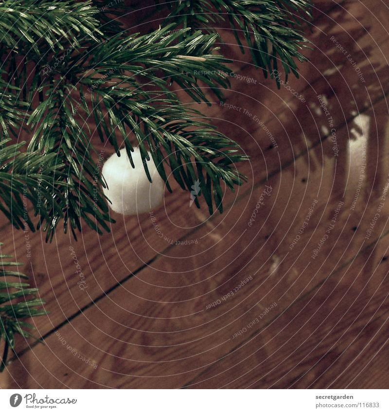 für weihnachten zweitausendacht Natur Weihnachten & Advent weiß grün dunkel Gefühle Wärme Stimmung braun Raum Feste & Feiern Kunst retro weich Bodenbelag