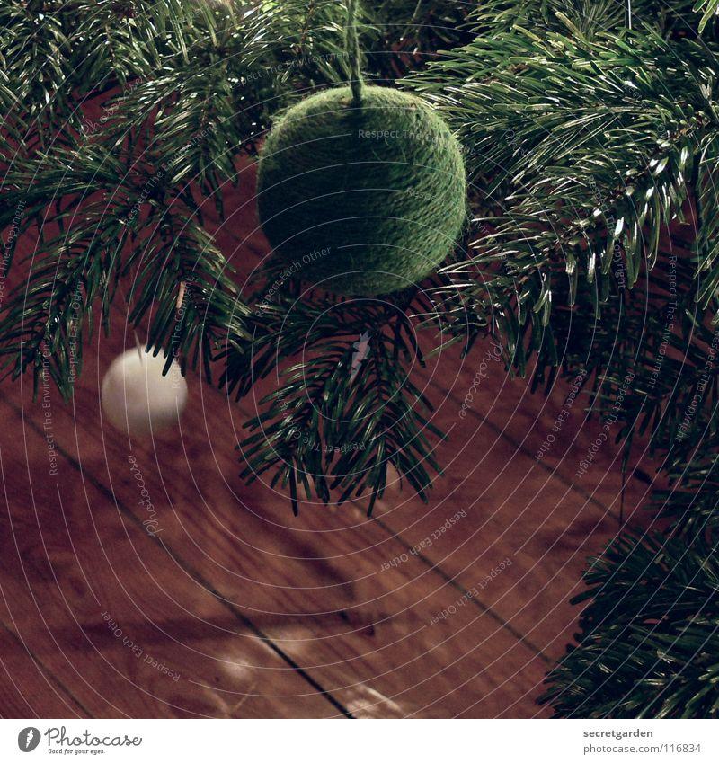 für weihnachten zweitausendacht Natur Weihnachten & Advent grün weiß dunkel Wärme Gefühle Innenarchitektur Feste & Feiern Kunst braun Stimmung Raum Dekoration & Verzierung Ast weich