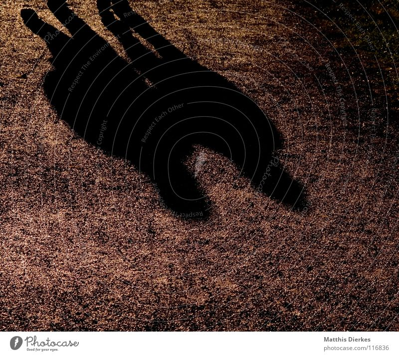 Dos Mann Frau Gegenlicht Fußweg Licht Belichtung Koloss Begleiter Zusammensein Treue Liebe Herbst Paar Couple Bodenbelag Wege & Pfade Spaziergang Schatten