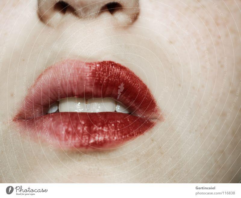 Lippenrot schön Schminke Lippenstift Frau Erwachsene Nase Mund Zähne Teint Glamour Sommersprossen offen verführerisch geschminkt Bildausschnitt bleich Farbfoto