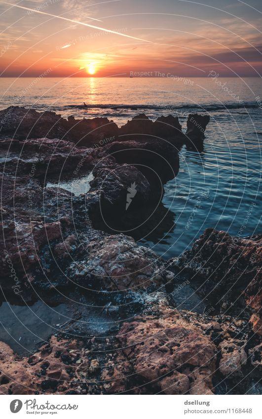 sonnenaufgang. Landschaft Wasser Himmel Wolken Sonnenaufgang Sonnenuntergang Sommer Schönes Wetter Felsen Wellen Küste Mittelmeer orange rot schwarz Romantik