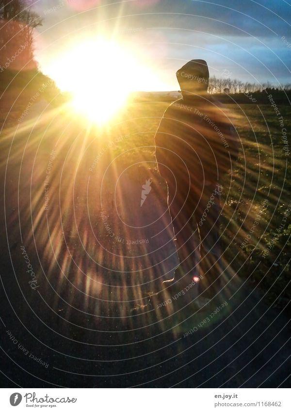 sonnendurchflutet Leben maskulin Mann Erwachsene 1 Mensch Umwelt Natur Himmel Sonne Sonnenaufgang Sonnenuntergang Sonnenlicht Schönes Wetter Wiese Wege & Pfade