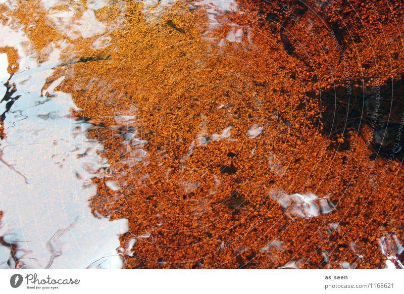 Feuerwasser Umwelt Natur Landschaft Urelemente Erde Sand Wasser Klima ästhetisch außergewöhnlich gruselig nass orange rot schwarz Tod Rache Aggression Abenteuer