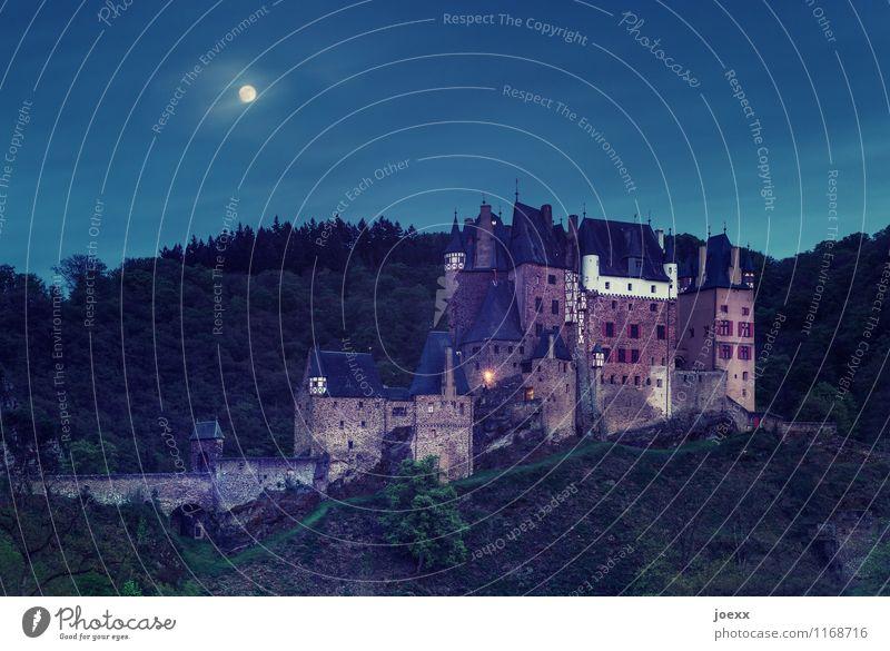 Der Spuk beginnt. Landschaft Himmel Nachthimmel Vollmond Schönes Wetter Wald Berge u. Gebirge Burg oder Schloss Mauer Wand alt groß historisch hoch blau braun