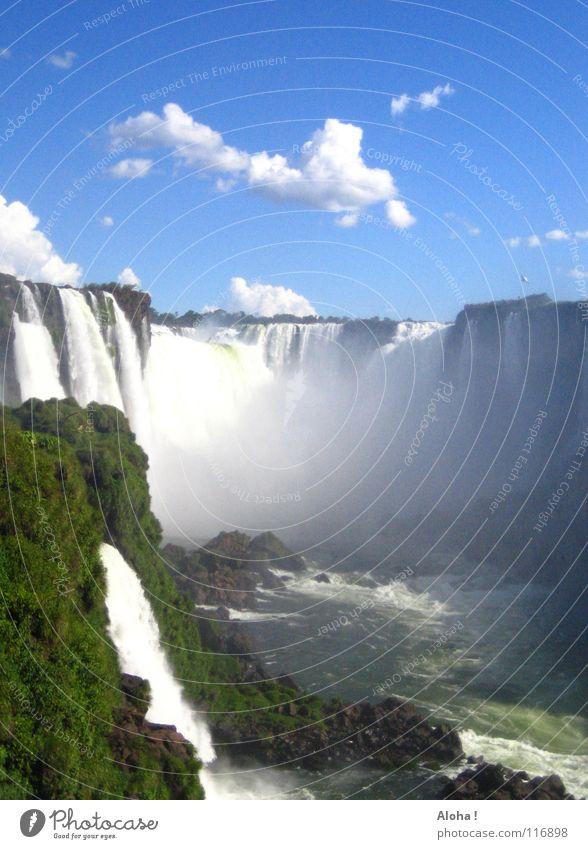 """""""Poor Niagara!""""  I Strömung Berghang Brasilien Argentinien Kunst Wassermassen Pflanze Gewässer Tourismus Baum Wolken Horizont Wassertropfen Tourist Gischt Nebel"""