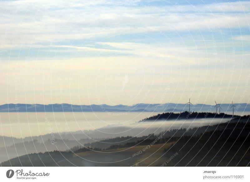Windkonsumenten Vogesen Hügel Mittelgebirge Fichte Schwarzwald Wald Baum Wolken Nebel Wolkendecke ökologisch Erneuerbare Energie Berge u. Gebirge Wetter