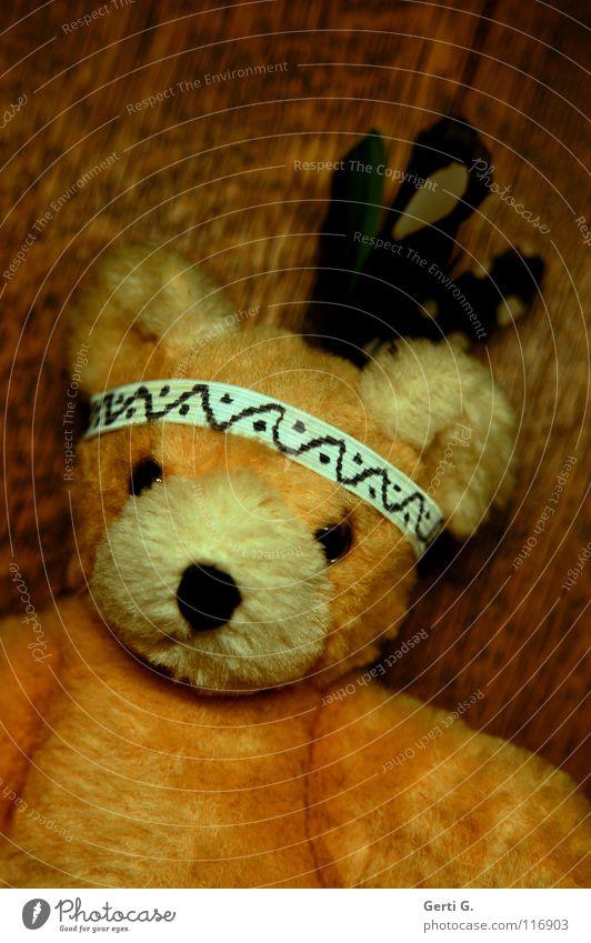 Indianerbär Traurigkeit Spielen Holz liegen Feder Dinge Schnur Trauer Spielzeug Gesichtsausdruck Verzweiflung kuschlig Schwäche Bär Gummi bespielen
