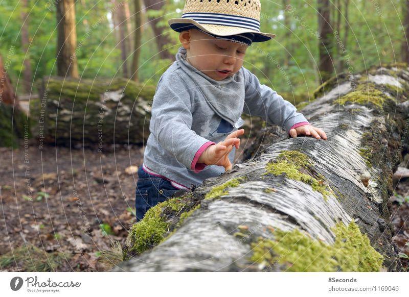 auf entdeckungsreise Mensch Kind Natur Ferien & Urlaub & Reisen grün Sommer Baum Freude Wald Spielen maskulin Kindheit Fröhlichkeit Ausflug Baby beobachten