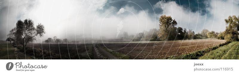 Licht und Schatten Feld Baum Bodennebel dunkel Erholung Fußweg Gegenteil Herbst Idylle kalt Morgen Denken Nebel Nebelwand unklar Panorama (Aussicht) poetisch