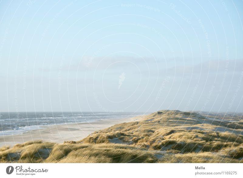 Ohne Ende Umwelt Natur Landschaft Sand Wasser Himmel Gras Wellen Küste Strand Nordsee Meer Düne Stranddüne Dünengras frei Unendlichkeit maritim natürlich oben