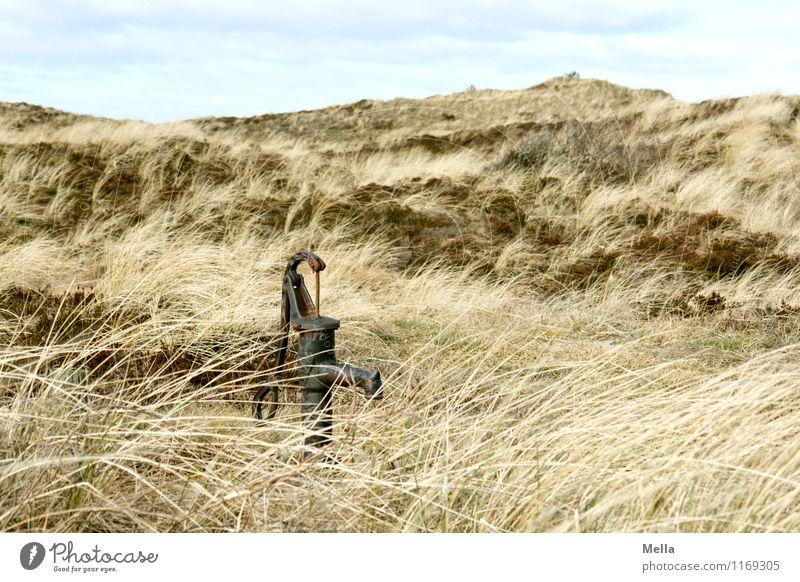 Wasser Natur alt Landschaft Umwelt Gras einfach Vergänglichkeit Hügel Brunnen trocken Düne Dürre Überleben Steppe Dünengras Altertum