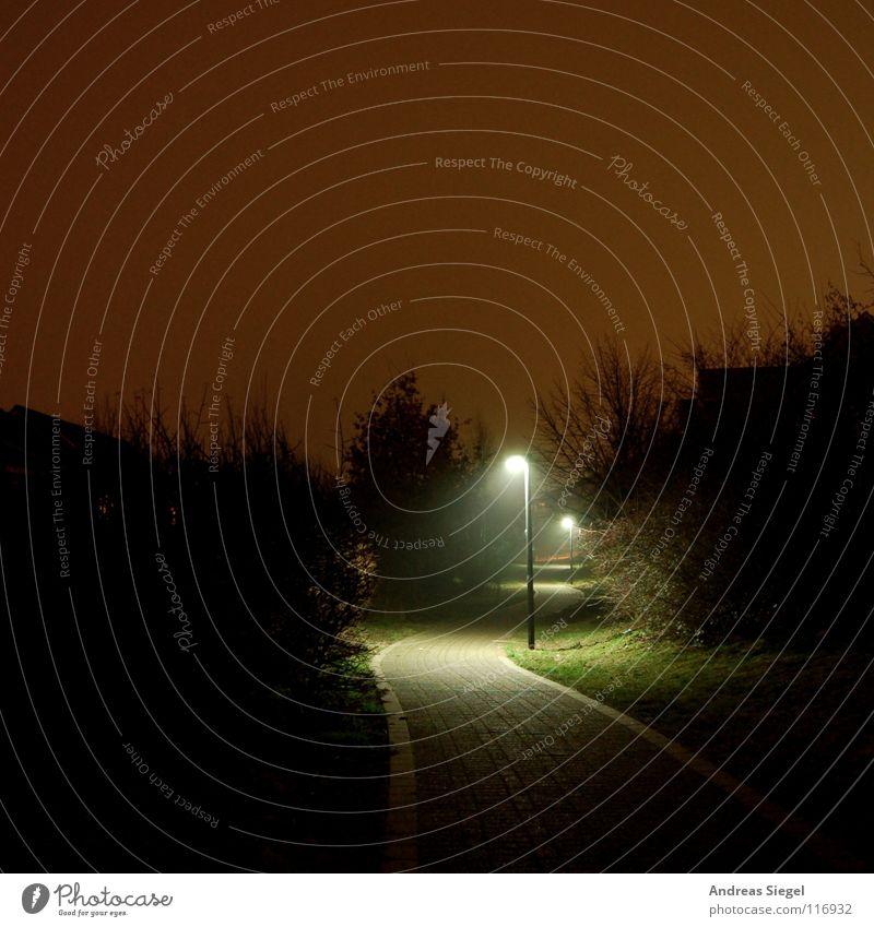 Laterne, Laterne... Himmel Baum grün rot schwarz dunkel kalt Garten Wege & Pfade Park Beleuchtung Rasen Laterne Bürgersteig Verkehrswege mystisch