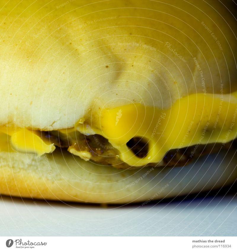 Heut Gibts Burger Jungs! alt gelb kalt Ernährung Lebensmittel gefährlich USA verfallen trocken Gastronomie Kuh Brot Karton Fett Fleisch Brötchen