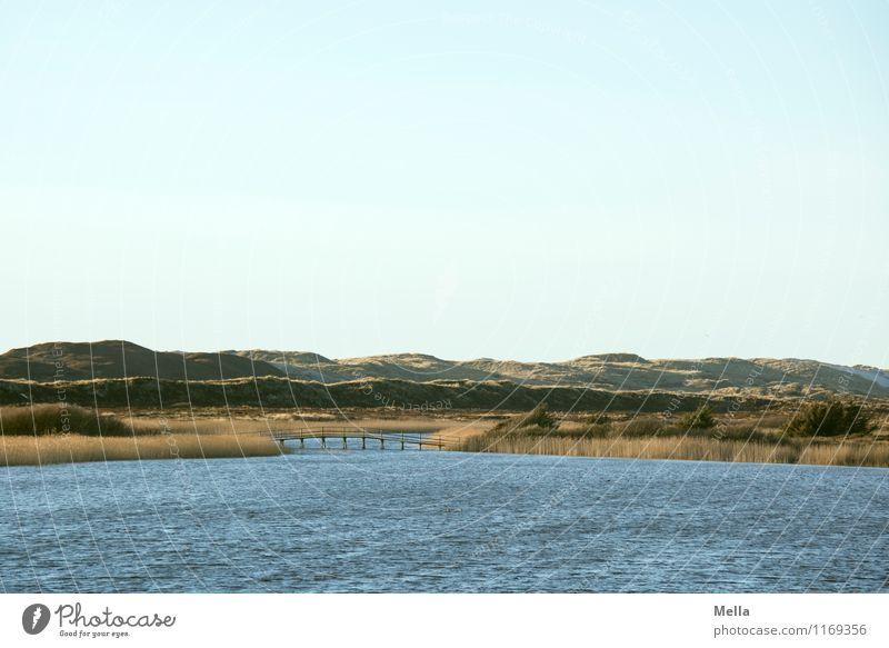Übergang Umwelt Natur Landschaft Wellen Küste Seeufer Biotop Düne Schilfrohr Brücke natürlich Einsamkeit Idylle Pause ruhig Wege & Pfade Ferne Farbfoto
