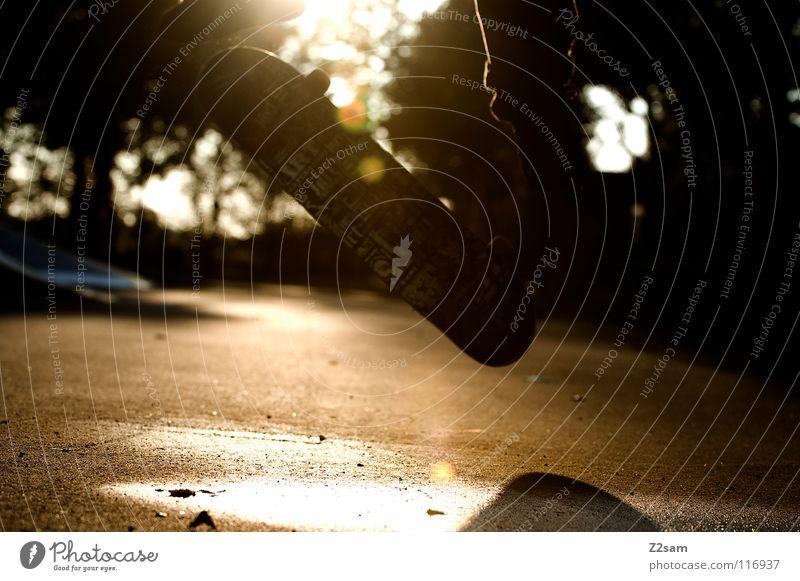 sunshine flip Salto Kickflip Heelflip Teer Beton Sport Physik Pfütze nass Park Skateboarding Sportpark springen hüpfen Aktion drehen Baum Mitte Stil lässig