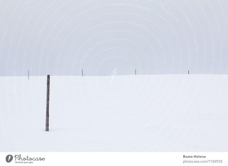 sw | minimalistisch Ruhestand Natur Landschaft Winter Wetter Schnee Feld Hügel Menschenleer außergewöhnlich schwarz weiß Stimmung Schutz standhaft Zufriedenheit