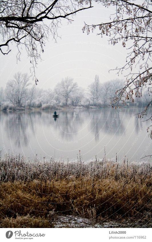 Allein auf dem See Teich Winter Baum kalt Angler Angeln Angelrute Wasserfahrzeug Rudern Gras braun beige weiß Spiegel Klarheit Schnee Frost Eis Zweig Ast Küste
