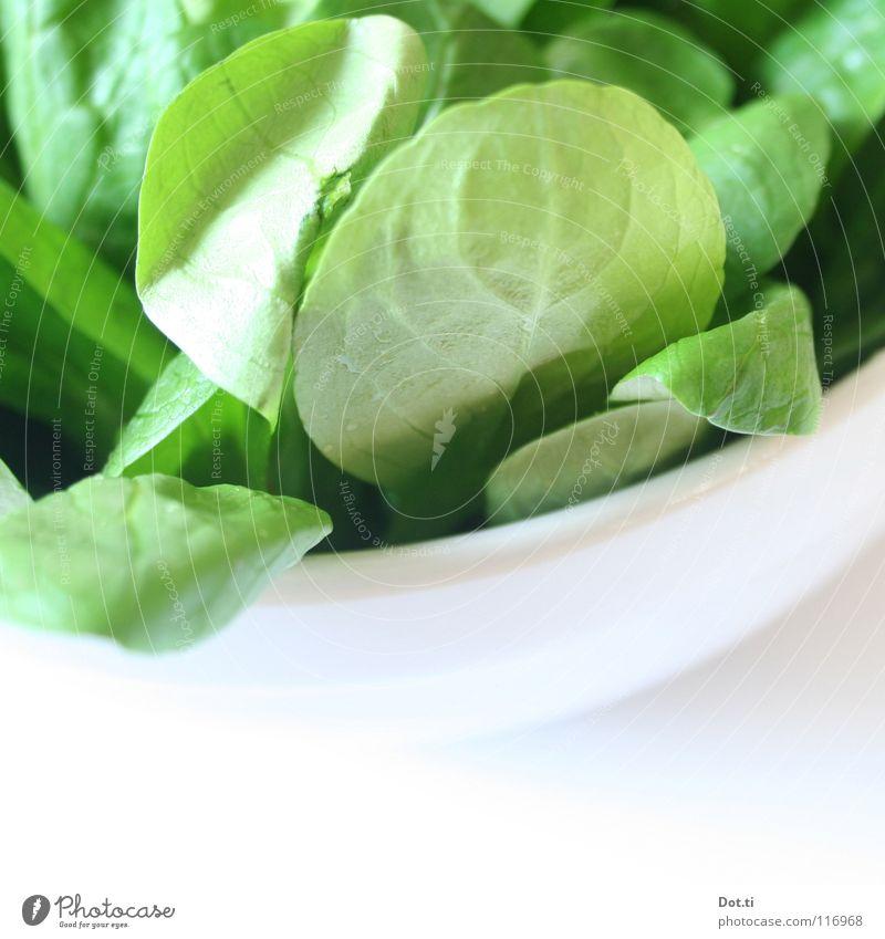 100 g 2,99 € weiß grün Ernährung hell Gesundheit Lebensmittel frisch Geschirr lecker Appetit & Hunger ökologisch Mahlzeit Diät Vitamin Bioprodukte