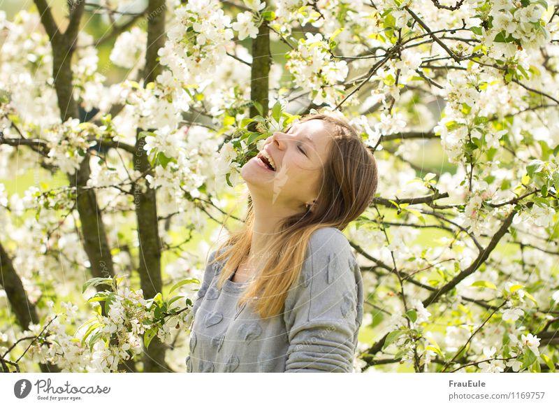schlapplachen unterm blütenbaum Freude Glück feminin Junge Frau Jugendliche 1 Mensch 18-30 Jahre Erwachsene Natur Pflanze Sonne Frühling Schönes Wetter Baum