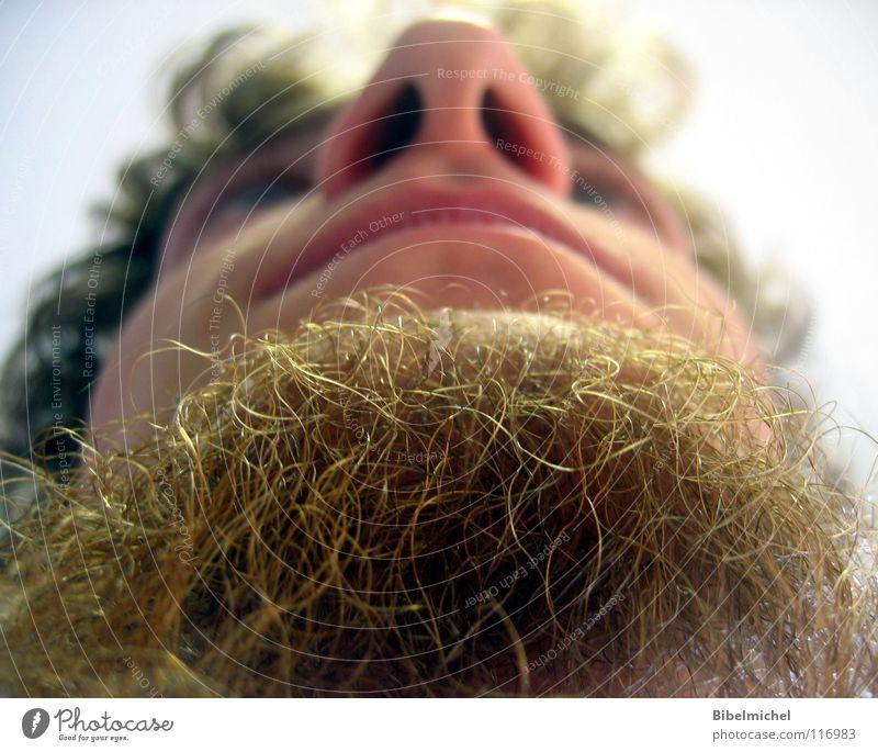 Ziegenmensch Bart Locken Blick nach oben Froschperspektive braun Lippen Wange Kinnbart Barthaare Unterlippe Oberlippe Mann Konzentration Säugetier