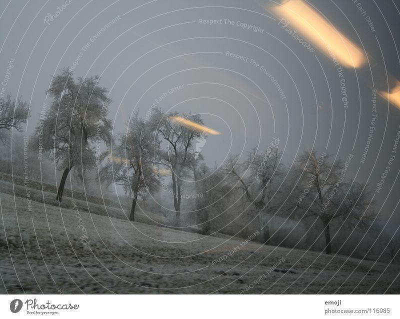 Bahnfahrt Eisenbahn fahren Winter trist Ödland Schnee Nebel Bahnfahren Licht Reflexion & Spiegelung Beleuchtung kalt Baum Feld ländlich Schweiz grau Schnellzug