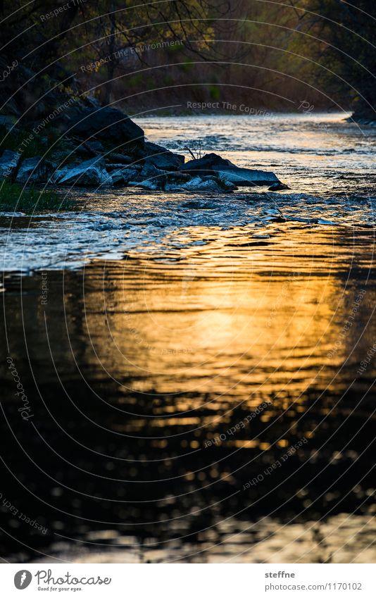 Natur V Idylle Fluss Flussufer Bach