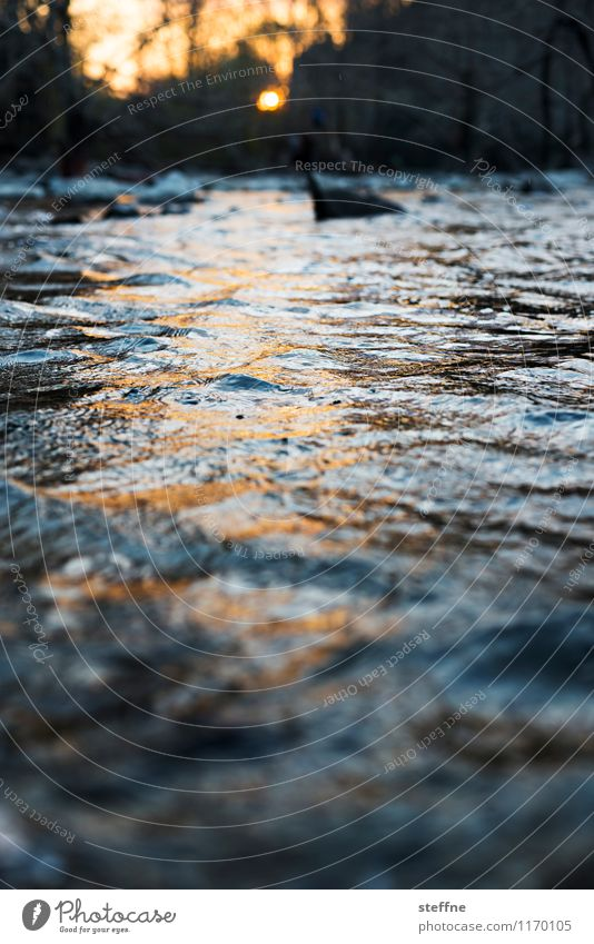 Alles fließt: Fall Creek Natur Wasser Erholung Landschaft ästhetisch Schönes Wetter Romantik Flüssigkeit fließen