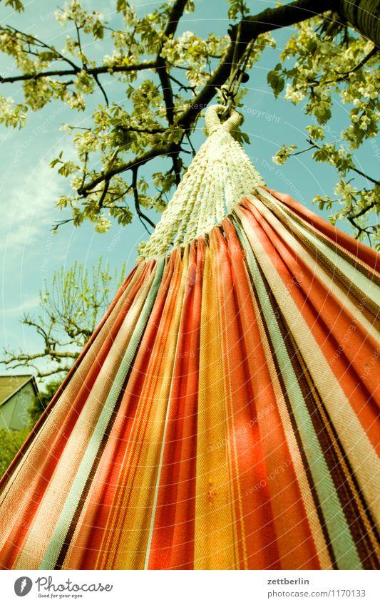 Hängematte Ferien & Urlaub & Reisen Erholung Freizeit & Hobby ruhig Pause ausruhend liegen hängen Stoff Textilien Froschperspektive Frühling Sommer Garten