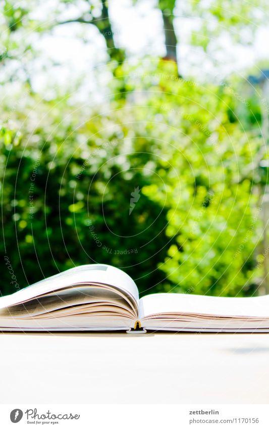 Lesen im Garten Berlin blättern Buch Berufsschule Kochbuch Frühling klein Schrebergarten Printmedien lesen Lesestoff Literatur Papier Tisch Blatt blätternd Wind