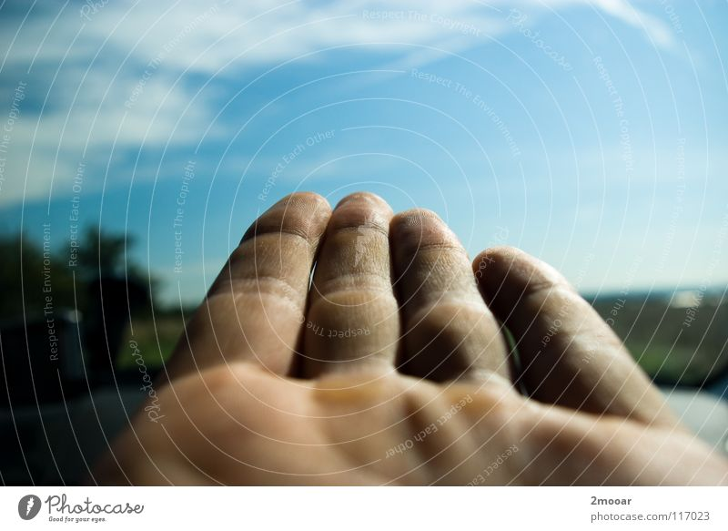 Fingerpost Hand Sommer Baum Wolken weiß Himmel Erfolg linke Hand Gliedmaßen blau Klarheit Natur Wegweiser Freiheit Blue fingers sky clear trees clouds white