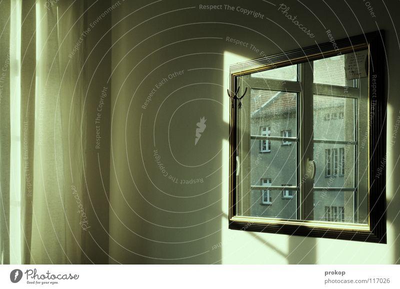 Sonne trotz Kater Fenster Spiegel Schlafzimmer Gardine Vorhang Hinterhof Dach Reflexion & Spiegelung Licht schön Gedicht Spielen Lichtspiel Physik weich
