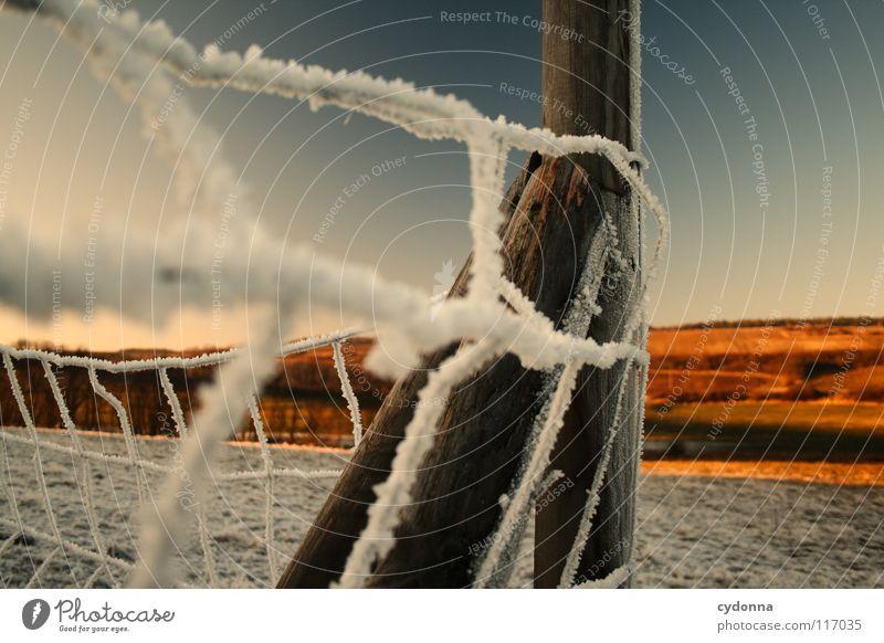 FEUERLAND I Natur schön Himmel weiß Sonne blau rot Winter ruhig Einsamkeit Ferne Farbe Leben kalt Schnee Wiese