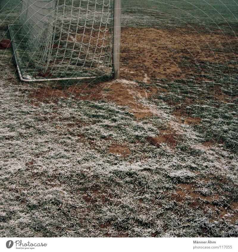 Gute Freunde... Winter Sport Spielen Freizeit & Hobby Fußball Ball Rasen einzeln Fernseher Spielzeug Spielfeld Tor Club Radio Shorts Fan