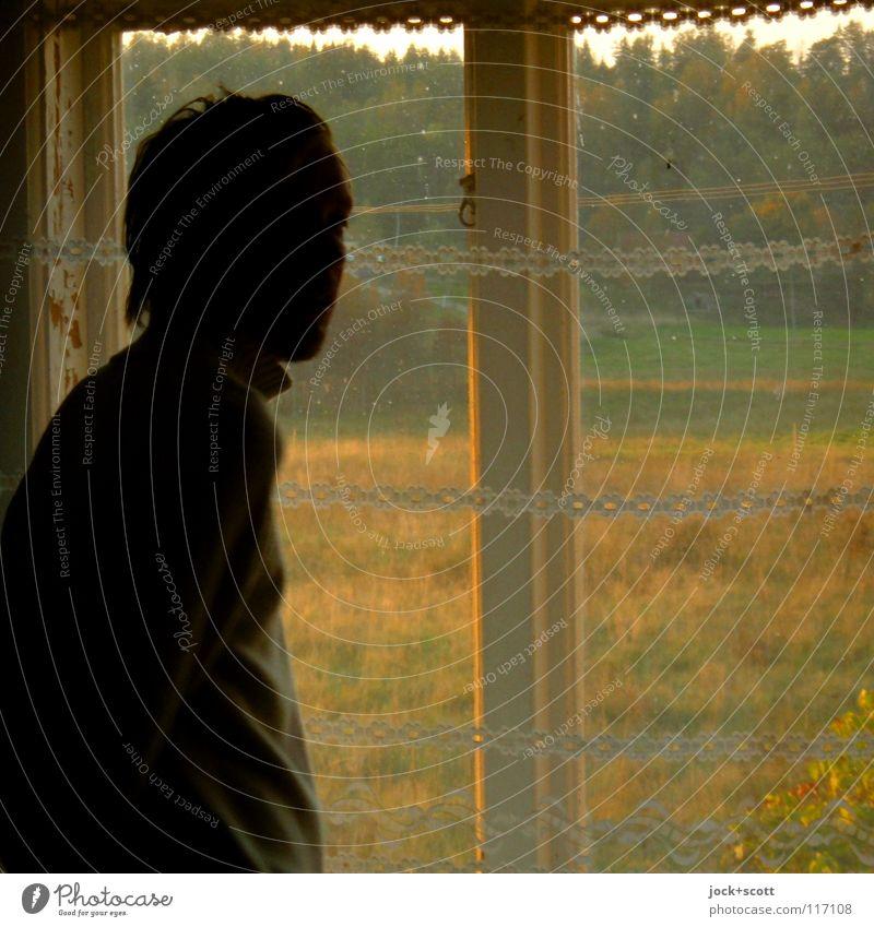 Schwedische Gardine Mensch Mann alt grün Landschaft Erwachsene Fenster Wärme Wiese Gebäude Stil träumen Häusliches Leben Zufriedenheit Glas