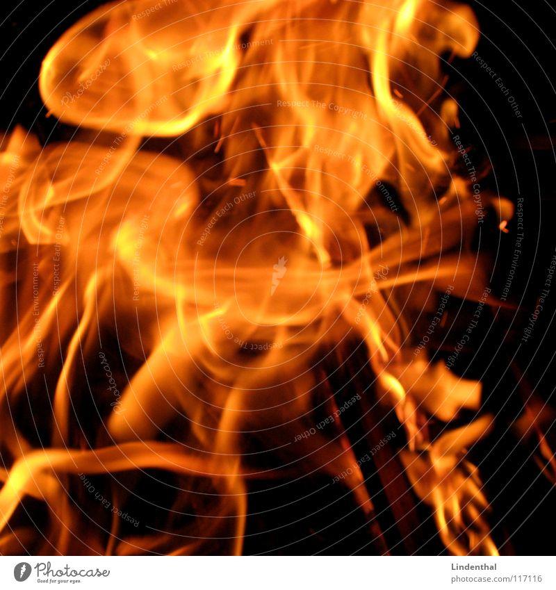 FLAMES Brand Physik heiß rot gefährlich Feuer Flamme Wärme Feuerstelle orange danger Schmerz chilie