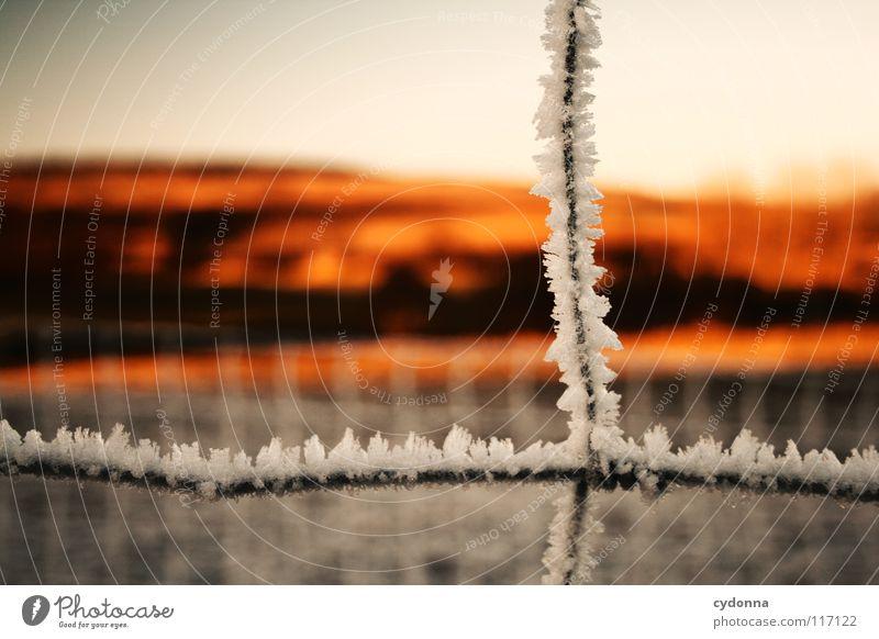 FEUERLAND III Himmel Natur weiß schön blau Sonne rot Winter ruhig Ferne Einsamkeit Farbe Leben kalt Schnee Wiese