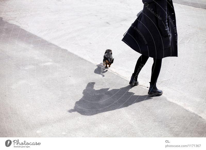 c und k Mensch feminin Frau Erwachsene Leben Beine 1 30-45 Jahre Mode Mantel Strumpfhose Stiefel Tier Haustier Hund Dackel Bewegung Farbfoto Gedeckte Farben